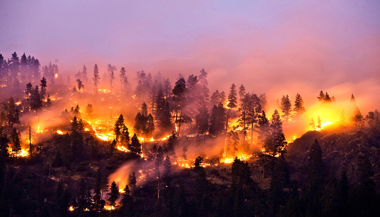 Firebreak Protection Systems
